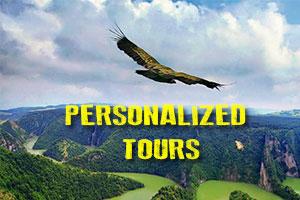 tosha-tours4